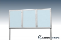 Gablota szklana WTS3