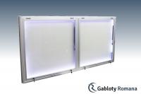 Gablota szklana DGPT6