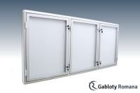 Gablota szklana 12-TS3-ZQ