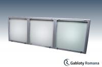 Gablota szklana TSPT6