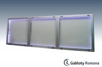 Gablota szklana TSPT-6